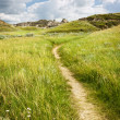 Trail in Badlands in Alberta, Canada - Stock Photo