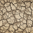 Dry cracked ground during drought — Stock Photo #6696510