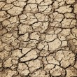 Dry cracked ground during drought — Stock Photo