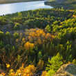 Fall forest and lake top view - Stock Photo
