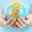 Hands holding globe - Stock Photo