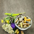Herbal medicine and herbs — Stock Photo #6696644