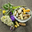 Herbal medicine and herbs - Stock Photo