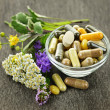 图库照片: Herbal medicine and herbs