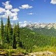 Rocky mountain view from Mount Revelstoke - Stock Photo