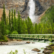 Takakkaw Falls waterfall in Yoho National Park, Canada — Stok fotoğraf