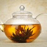 Flowering blooming tea — Stock Photo #6696900