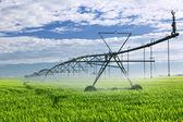 Equipamento de irrigação no campo agrícola — Foto Stock