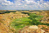 Badlands in Alberta, Canada — Stock Photo