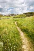 Trail in Badlands in Alberta, Canada — Stock Photo