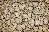 Dry cracked ground during drought — 图库照片