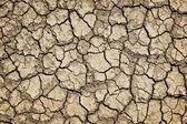 Sol fissuré sec pendant la sécheresse — Photo