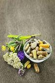 Erbe e fitoterapia — Foto Stock