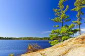 Margem de lago em ontário, canadá — Foto Stock