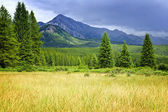 Scenic view in Canadian Rockies — Stock Photo