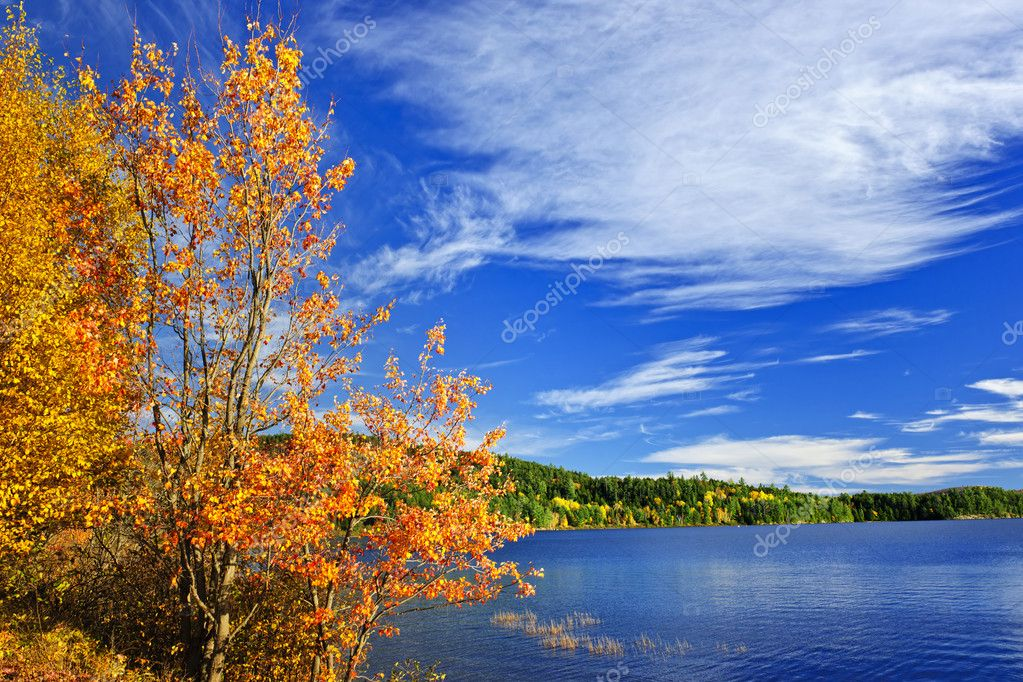 Lake and fall forest with colorful trees in Algonquin Park, Canada — Stock Photo #6696516