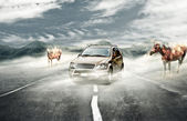 Driving on surreal mist — Stock Photo
