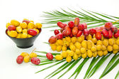 Fresh Date fruit — Stock Photo
