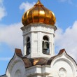 Christ the Saviour Cathedral - Stock Photo