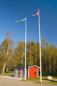 Flag of Sweden and Denmark on the background of the park — Stock Photo
