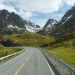 Road to norwegian mountains — Stock Photo