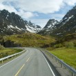 Road to norwegian mountains — Stock Photo #5913413