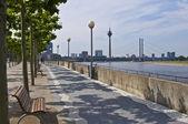 Rhine promenade — Stock Photo