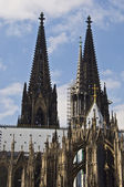 Catedral de colónia — Foto Stock