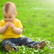 Little boy is sitting on green meadow — Stockfoto