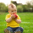 Little boy is sitting on green meadow — Stock fotografie