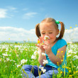 Little girl is smelling flowers on green meadow — Stock Photo #5627460