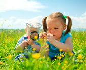 Children are playing on green meadow — Stockfoto
