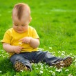 Little boy is sitting on green meadow — Stock Photo