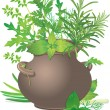 Royalty-Free Stock Vector Image: Bouquet fresh herbs in ceramic pot