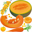 Stock Vector: Carotene products set