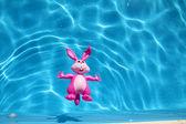 Little bunny's bathtime — Stock Photo