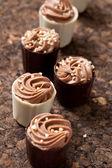 Çikolatalı pralin — Stok fotoğraf