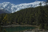 Tiny lake in a forest. Himalaya mountains. — Stock Photo