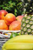 水果的安排 — 图库照片