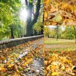 Stock Photo: Magic autumn scene in Bosnia