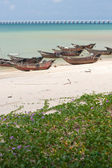 Bateaux de pêche de l'île weizhou — Photo