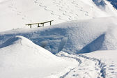 Snowboard tracks in alps snowscape — Stock Photo