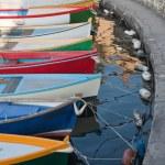 Colourful boats in torri del benaco — Stock Photo