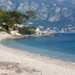 Tropical beach in south of france — Stock Photo