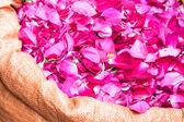 Bag of edible rose petals — Stock Photo