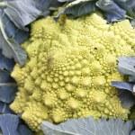 Fractal Romanesco cabbage — Stock Photo #5920613