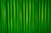 Tenda verde — Foto Stock