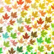 Colourful Maple leaves — Stockfoto