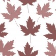 Maple leaf seamless tile — Stock Photo