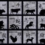Chinese Zodiac symbols — Stock Photo